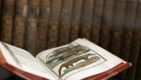 "BIBLIOTHECA OPEKA / vodstvo kroz izložbu Projekt ""Ruralna detoksikacija upoznavanjem bogatstva kulturne baštine – DETOX"""