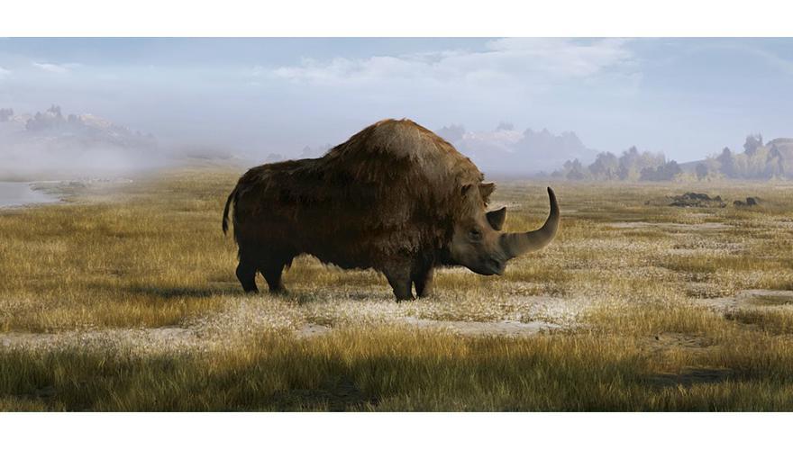 Vodstvo kroz izložbu Erik/a – vunasti nosorog