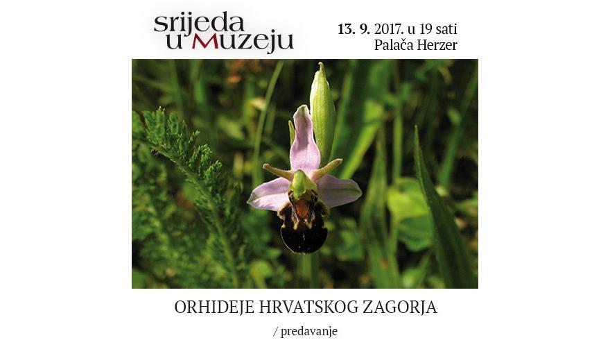 SRIJEDA U MUZEJU Orhideje Hrvatskog zagorja